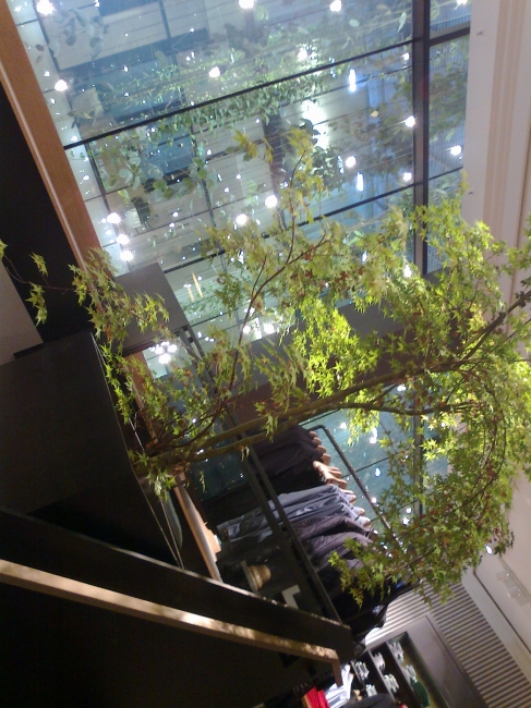 Atrium and rear staircase of the newly renovated Marc O'Polo store on Theatinerstraße, Munich,
