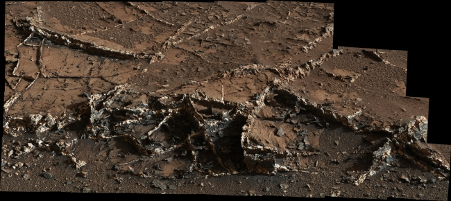Prominent Veins at 'Garden City' on Mount Sharp, Mars, Figure 1 Click on the image for larger version Right click here to download half size resolution JPEG (See Photojournal Note below for full resolution TIFF) ...