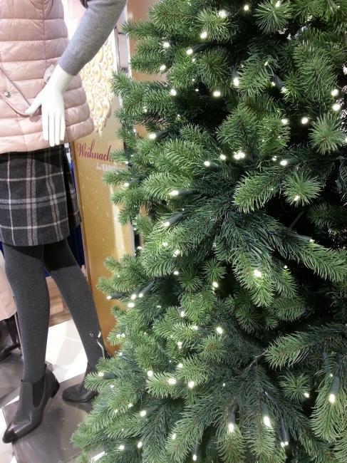 Weihnachtsbaum,