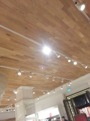 """""""Wood Paneled Ceiling"""""""