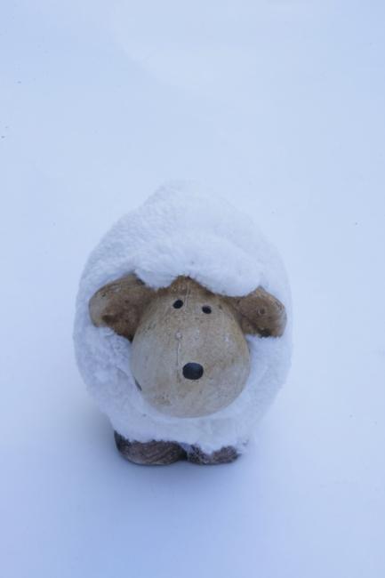 Sheep, figurine, white,