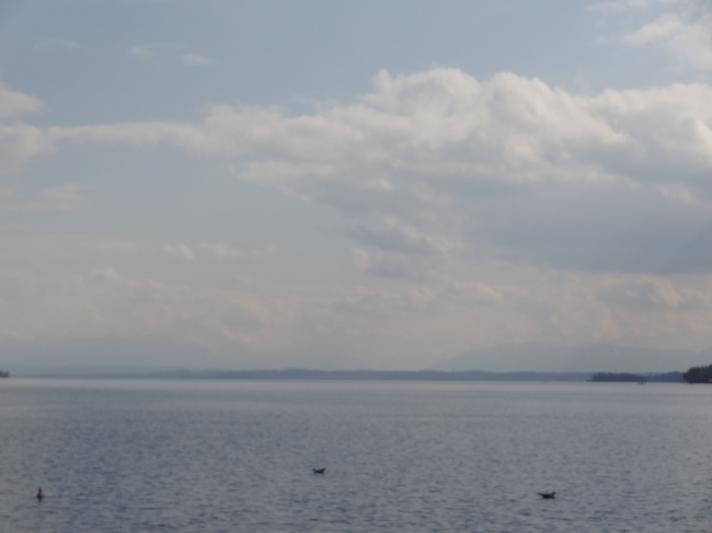 The Alps on the horizon, Starnberger See