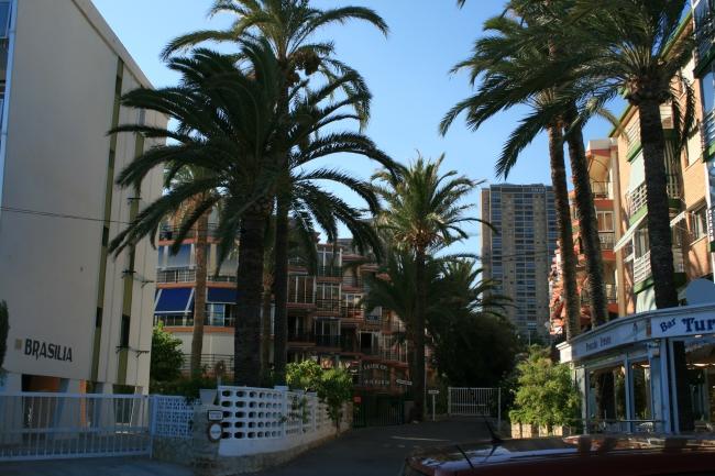 IMG_09975_Playa de Poniente.JPG, Brasilia, Archanda und Turia