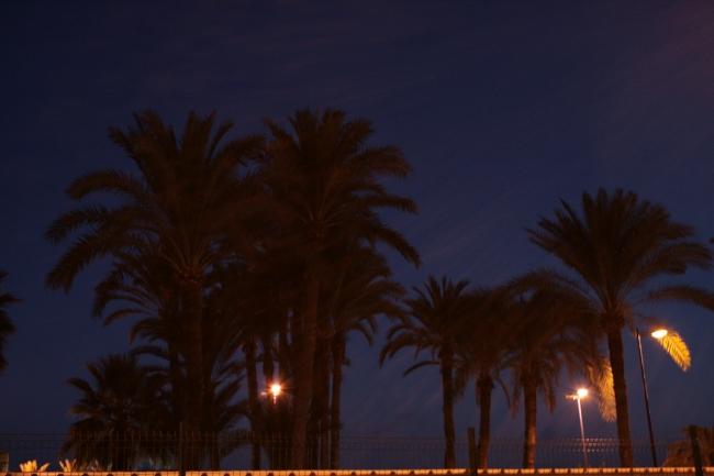 IMG_10017_Playa de Poniente.JPG, Ulia Palms