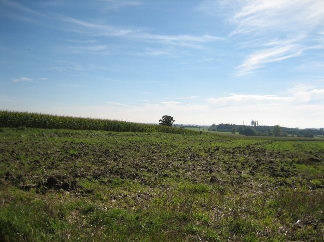 Feld im Nord-Westen von München,