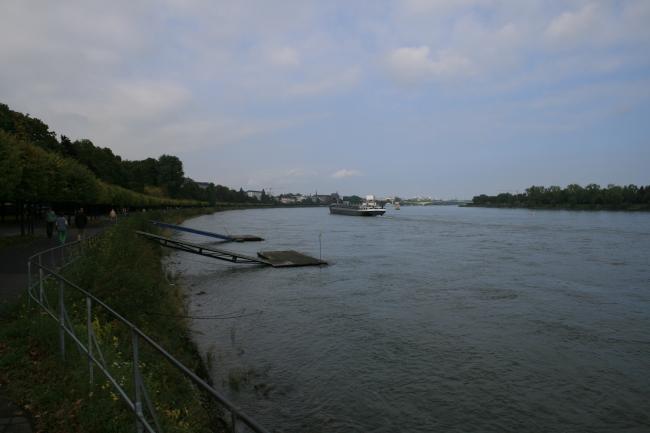 Rheinufer in Bonn,