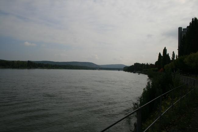 Der Rhein in Bonn mit Blick Richtung Drachenfels,