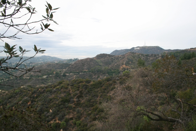 The Hollywood Sign and the rolling hills of Griffith Park, Near Griffith park Observatory