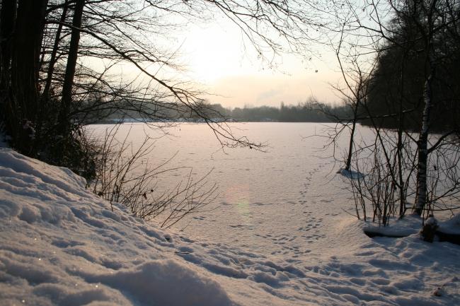 Wintersonne über dem Rotbachsee,