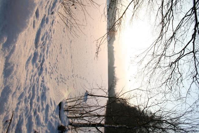Wintersonne über dem Rotbachsee, vertikal,