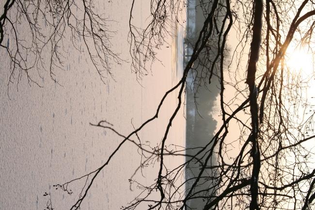 Wintersonne am See,
