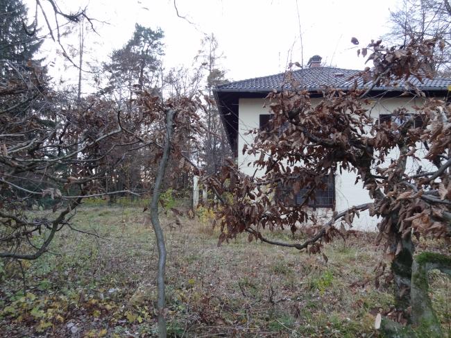 Zugewachsenes Forsthaus,