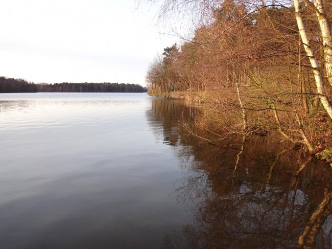 See und Uferböschung,