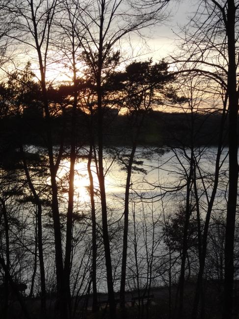 See und Bäume und untergehende Sonne 2,