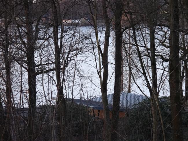 Picknickanlage am See, vom Turm aus