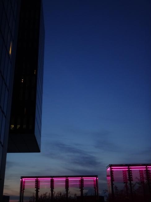 Neon 4 @ Hyatt,