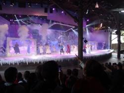 Frozen Sing-A-Long sho...