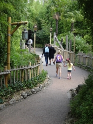 Path to Adventureland'...