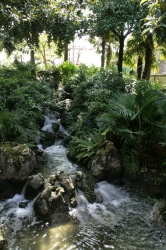 The pond / waterfall a...